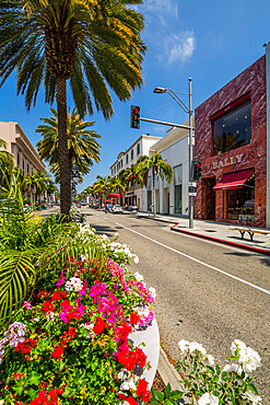 View of shops on Rodeo Drive, Beverley Hills, Los Angeles, California, United States of America, North America