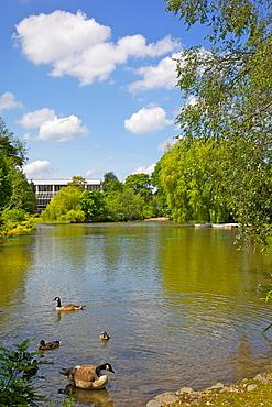 Queen's Park, Chesterfield, Derbyshire, England, United Kingdom, Europe