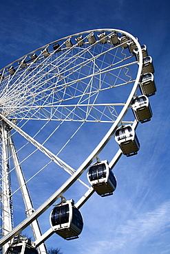 The Wheel of York, Royal York Hotel Grounds, York, Yorkshire, England, United Kingdom, Europe