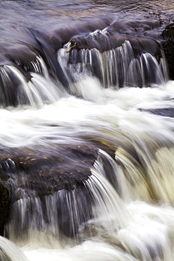 Redmire Force on the River Ure, Wensleydale, Yorkshire Dales, Yorkshire, England, United Kingdom, Europe