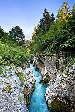 Overlooking the depths of the narrow gorge of Velika Korita, Gorenjska, Slovenia, Europe