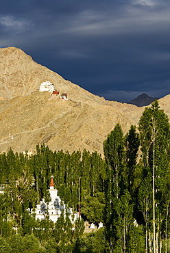 Stormy light over the Namgyal Tsemo fort and monastery (gompa), Leh, Ladakh, India, Asia