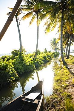 Backwaters near North Paravoor, Kerala, India, South Asia