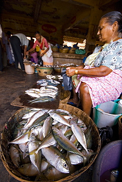 Woman selling fish, Mapusa Market, Goa, India, Asia