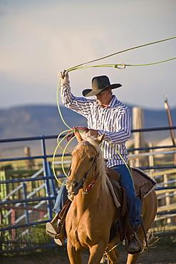 Bryce Rodeo, Bryce, Utah, United States of America, North America