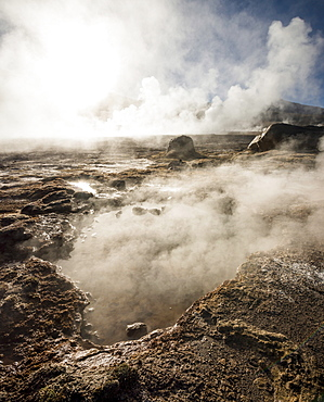 Tatio Geysers, Atacama Desert, El Norte Grande, Chile, South America