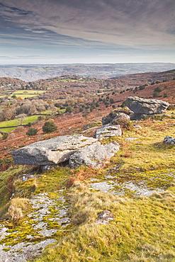 Hayne Down in Dartmoor National Park, Devon, England, United Kingdom, Europe