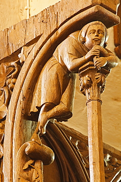The 14th century carved wooden stalls in the church of Saint Jean l'Evangeliste, Barre le Regulier, Cote d'Or, Burgundy, France, Europe