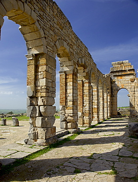 Roman archaeological site, Volubilis, UNESCO World Heritage Site, Meknes Region, Morocco, North Africa, Africa