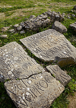 Carving on stone at the Roman archaeological site, Volubilis, UNESCO World Heritage Site, Meknes Region, Morocco, North Africa, Africa
