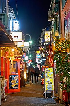 Nightlife in Golden Gai alley, Tokyo, Japan, Asia