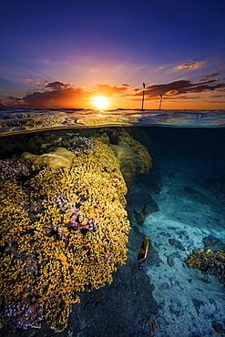 Sunset over the Etang-salé lagoon, Reunion Marine Nature Reserve, Indian Ocean