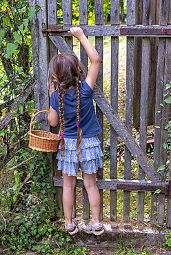 Girl trying to open the gate of a garden, summer, Moselle, France