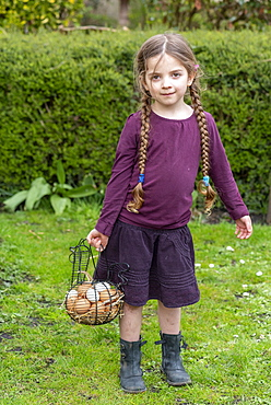 Girl carrying a basket full of chicken eggs in a garden