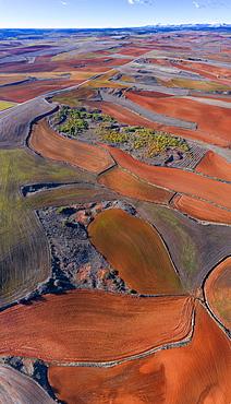 Agricultural landscape, Montaña Palentina, Palencia, Castilla y Leon, Spain, Europe