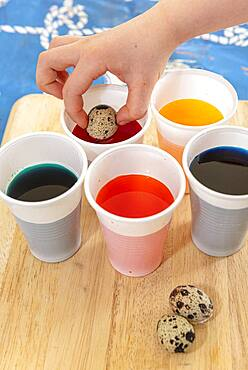 Coloring quail eggs with natural dyes for Easter, spring - 860-289251
