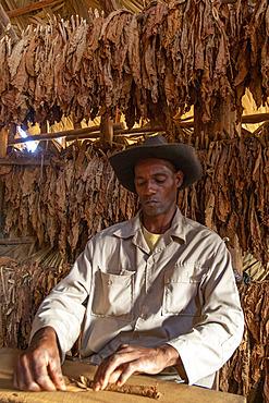 Handcrafted cigar making, Cuba