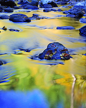 reflected colour in the middle of the little river Great Smoky Mountains National Park TN USA