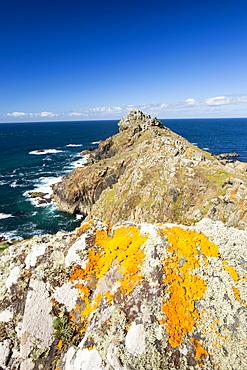 Lichen covered rocks on Gurnards Head near Zennor, Cornwall, UK.