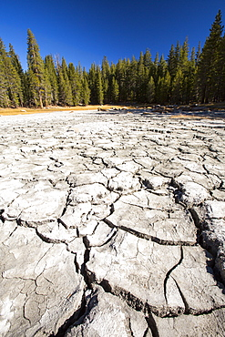 A drought impacted lake in Yosemite National Park, California, USA. Most of Califoprnia is in exceptional drought, the highest classification of drought.