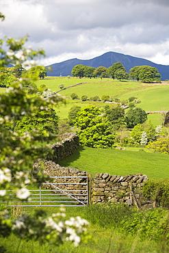 Lake district countryside near Keswick, Cumbria, UK.
