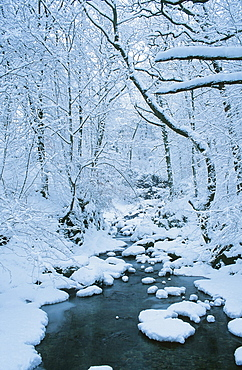 Snow on Stock Ghyll in Ambleside in the Lake District National Park, Cumbria, England, United Kingdom, Europe