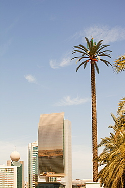 A mobile phone mast made to look like a palm tree in Dubai, United Arab Emirates, Middle East
