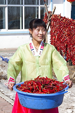 An ethnic South Korean woman farmer in Northern China shows off her chillies, China, Asia