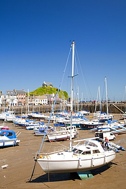 Ilfracombe harbour on the North Devon coast, England, United Kingdom, Europe