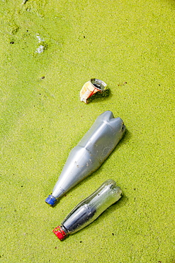 Rubbish thrown into a duckweed covered canal in Warrington, Lancashire, England, United Kingdom, Europe