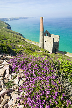 Towan Roath engine house at St. Agnes, Cornwall, England, United Kingdom, Europe