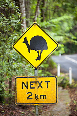 A sign warning motorists to look out for the Southern Cassowary (Casuarius casuarius) in the Daintrre Rainforest in Northern Queensland, Australia, Pacific