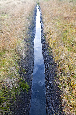 Drainage ditch in peat bog on Eaglesham Moor, Scotland, United Kingdom, Europe