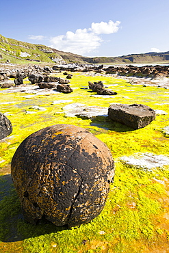 Rock formations and seaweed at the Bay of Laig at Cleadale on the Isle of Eigg, looking towards the Isle of Rhum, Scotland, United Kingdom, Europe