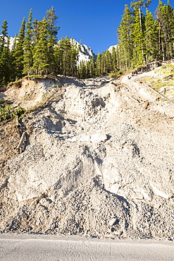 Damage from landslides caused by torrential rain near Maligne Lake, Jasper National Park, UNESCO World Heritage Site, Alberta, Canadian Rockies, Canada, North America