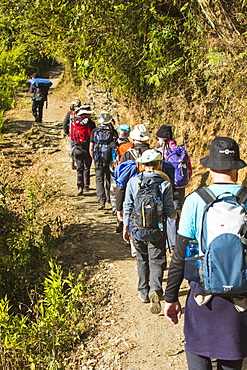 Trekkers on the Annapurna Base Camp trek, Nepal, Asia