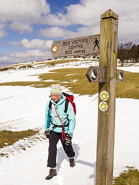 A woman walking on the Stiperstones, Shropshire, England, United Kingdom, Europe