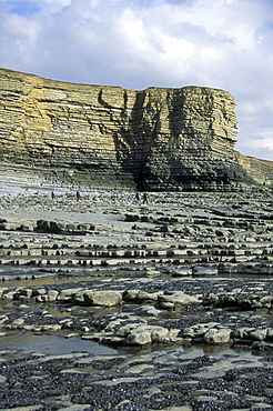 Nash Point, Heritage Coast, Vale of Glamorgan, South Wales      (rr)
