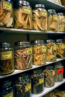 Dried shark fins and sea cucumbers for sale in traditional chinese medicine store, Hong Kong, China, Asia