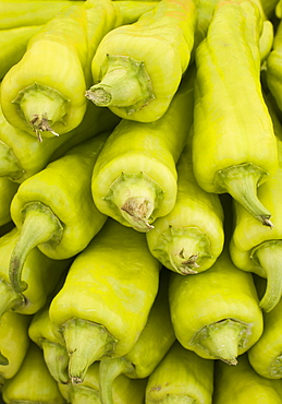 Green Peppers. Sunday morning markets. Pollenca, Tramuntana, Mallorca, Spain, Europe