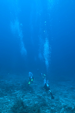 Scuba divers underwater, Thailand, Andaman Sea, Indian Ocean, Asia
