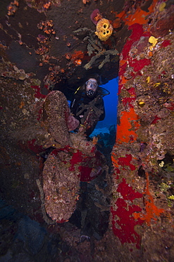 Wreck diving on the Hamel Wreck in the Bahamas, West Indies, Central America