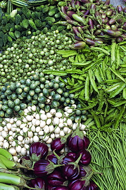 Close-up of vegetables of the aubergine family for sale in Thailand, Southeast Asia, Asia