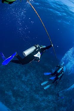 Divers waiting on decompression line, Cayman Brac, Cayman Islands, Caribbean