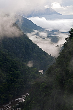 Low cloud in the Potaro River Gorge, Guyana, South America