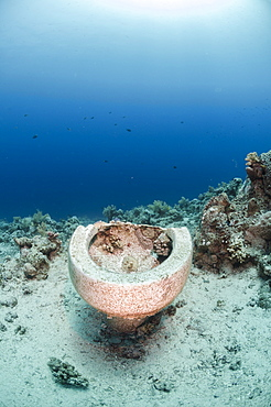 Collection of toilet bowls from shipwreck scattered on seabed, Ras Mohammed National Park, Red Sea, Egypt, North Africa, Africa