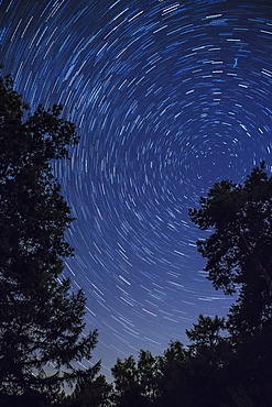 Star Trail with burning vapour from a perseid meteor, Netherlands, Europe