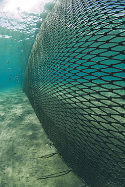 Shark net set in shallow water, Naama Bay, Ras Mohammed National Park, Sharm El Sheikh, Red Sea, Egypt, North Africa, Africa