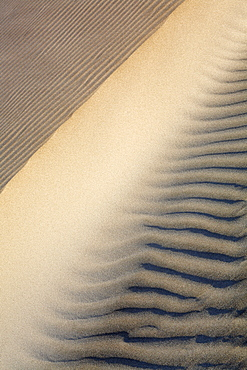 Patterns in the sand dunes of Isla Magdalena on the Pacific side of the Baja Peninsula, Mexico.