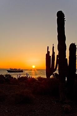 Sunrise from Isla San Esteban in the midriff region of the Gulf of California (Sea of Cortez), Baja California Norte, Mexico.    (rr)